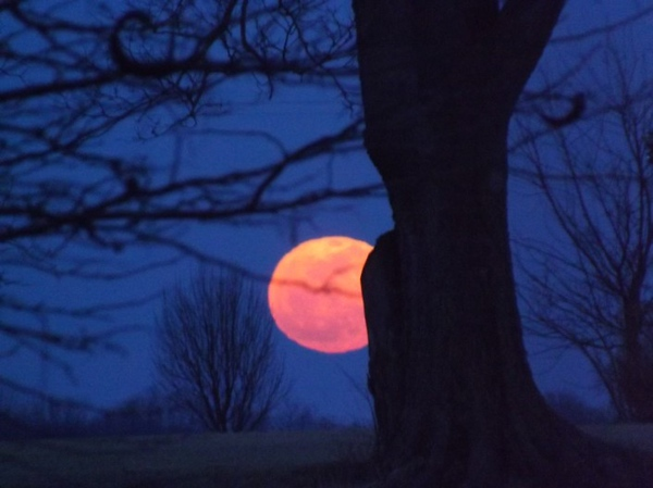 The Blood Moon on October  8 at my farm.<br /> <br /> Photographer's Name: J.R. Rosencrans<br /> Photographer's City and State: Alexandria, Ind.