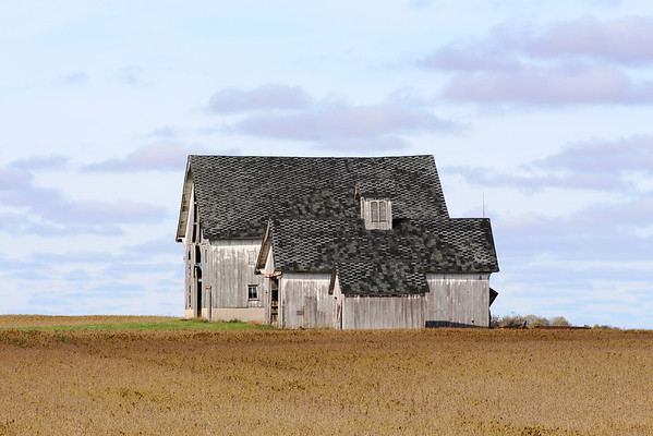 Green-roofed barns in Northern Madison County.<br /> <br /> Photographer's Name: Brian Fox<br /> Photographer's City and State: Anderson, Ind.