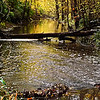 Killbuck Creek in the fall.<br /> <br /> Photographer's Name: J.R. Rosencrans<br /> Photographer's City and State: Alexandria, Ind.