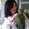 Anderson resident Sherri Plummer converses with her favorite macaw.<br /> <br /> Photographer's Name: David Flanagan<br /> Photographer's City and State: Anderson, Ind.