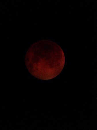 Blood moon from Anderson<br /> <br /> Photographer's Name: Bill Hallsworth<br /> Photographer's City and State: Anderson, Ind.