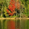 And so it begins: fall colors at Shadyside Lake.<br /> <br /> Photographer's Name: J.R. Rosencrans<br /> Photographer's City and State: Alexandria, Ind.