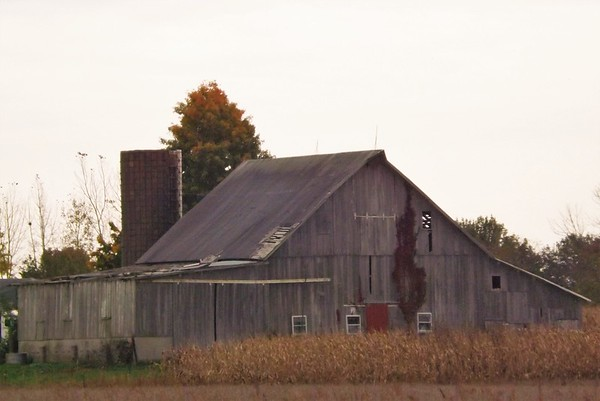 Barns of Indiana...in Madison County.<br /> <br /> Photographer's Name: J.R. Rosencrans<br /> Photographer's City and State: Alexandria, Ind.
