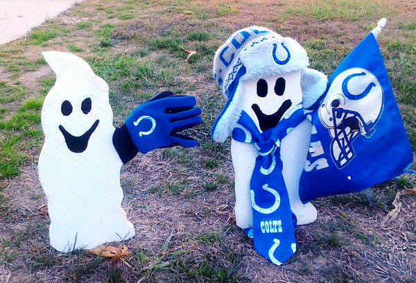 Spooky Colts Photographer: David Simmons