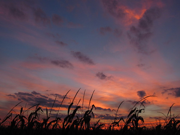 First Tuesday in October's sunset.<br /> <br /> Photographer's Name: Harry Van Noy<br /> Photographer's City and State: Lafayette Township, Ind.