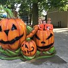 This is Natalie, Ryan, and Kendall Long of Alexandria, at Cedar Point.<br /> <br /> Photographer's Name: Carrie Long<br /> Photographer's City and State: Alexandria, Ind.