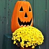 October barn decorations at  Moonrise Farms in Richland Township.<br /> <br /> Photographer's Name: J.R. Rosencrans<br /> Photographer's City and State: Alexandria, Ind.