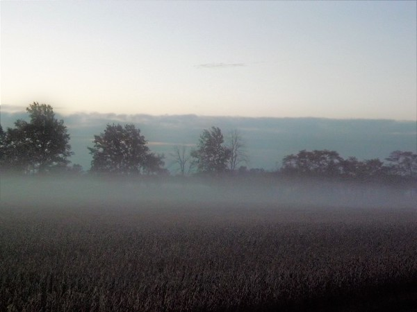 Farm field fog in Richland Township.<br /> <br /> Photographer's Name: J.R. Rosencrans<br /> Photographer's City and State: Alexandria, Ind.