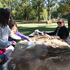 Various furs on a table at Archaeology Day with naturalist Ariel helping with identification.  <br /> <br /> Photographer's Name: Jerry Byard<br /> Photographer's City and State: Anderson, Ind.