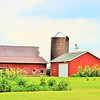 A rural Indiana farm.<br /> <br /> Photographer's Name: Rebecca Reding<br /> Photographer's City and State: Anderson, Ind.