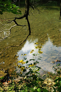 A view of the water at Mounds State Park.  Photographer's Name: Morgan Elbert Photographer's City and State: Alexandria, Ind.