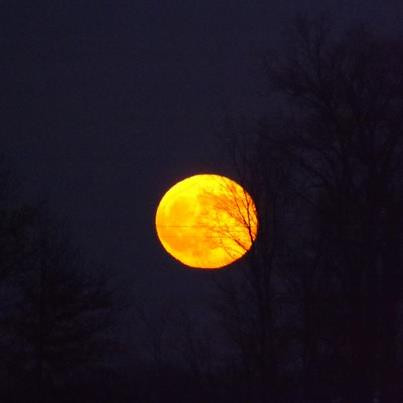 """""""Harvest Moon,"""" taken at my farm Richland Township.<br /> <br /> Photographer's Name: J.R. Rosencrans<br /> Photographer's City and State: Alexandria, Ind."""