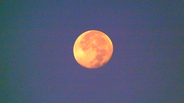 The Harvest Moon is coming...<br /> <br /> Photographer's Name: J.R. Rosencrans<br /> Photographer's City and State: Alexandria, Ind.