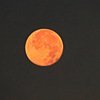 A full moon at my farm in Richland Township.<br /> <br /> Photographer's Name: J.R. Rosencrans<br /> Photographer's City and State: Alexandria, Ind.