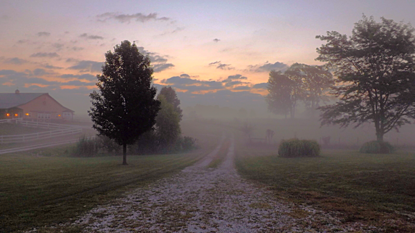 My farm lane on a foggy morning in Richland Township.<br /> <br /> Photographer's Name: J.R. Rosencrans<br /> Photographer's City and State: Alexandria, Ind.