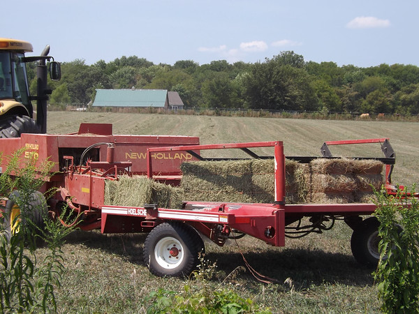Making hay while the sun shines. <br /> <br /> Photographer's Name: J.R. Rosencrans<br /> Photographer's City and State: Alexandria, Ind.