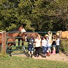 A farm visit for horse loving kids...Moon Rise Farms in Richland Township.<br /> <br /> Photographer's Name: J.R. Rosencrans<br /> Photographer's City and State: Alexandria, Ind.