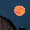 The moon rising over my neighbor's barn this week<br /> <br /> Photographer's Name: Terry Lynn Ayers<br /> Photographer's City and State: Anderson, Ind.