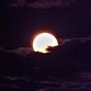 The September full harvest moon.<br /> <br /> Photographer's Name: J.R. Rosencrans<br /> Photographer's City and State: Anderson, Ind.