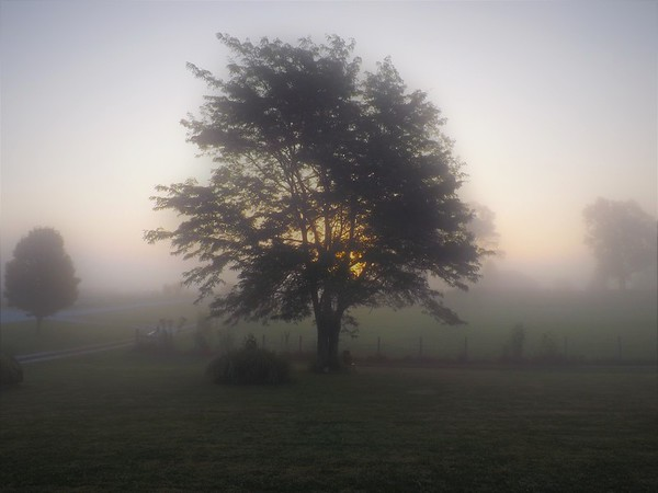 Morning mist at my farm in Richland Township.<br /> <br /> Photographer's Name: J.R. Rosencrans<br /> Photographer's City and State: Alexandria, Ind.