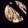 FULL MOON<br /> <br /> Photographer's Name: MARK THOMAS<br /> Photographer's City and State: NORTHPORT, MI