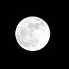 <b>Submitted By:</b> Linda Park <b>From:</b> Traverse City, Michigan <b>Description:</b> Full moon on Good Friday