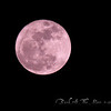 <b>Submitted By:</b> Randal S Hart <b>From:</b> traverse city <b>Description:</b> full moon...