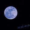 <b>Submitted By:</b> Randal S Hart <b>From:</b> traverse city <b>Description:</b> blue moon...