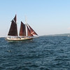 <b>Submitted By:</b> Rosalie Karpowski <b>From:</b> Traverse City <b>Description:</b> Tall Ships Festival Traverse City