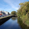 <b>Submitted By:</b> Roslyn Lambert <b>From:</b> Traverse City  <b>Description:</b> The Boardman River in mid September.