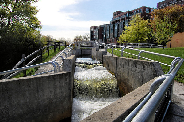 <b>Submitted By:</b> Jacqueline Burke <b>From:</b> Traverse City <b>Description:</b> Fish ladder in the park downtown