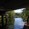 <b>Submitted By:</b> Roslyn Marie Lambert  <b>From:</b> Traverse City  <b>Description:</b> The Boardman River in mid September.