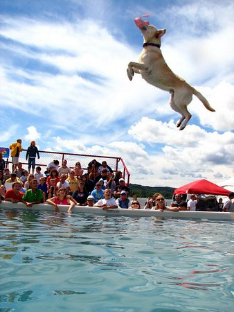 <b>Submitted By:</b> Melissa Kegg <b>From:</b> Cincinnati, OH <b>Description:</b> Air Dog competition at the Traverse City Cherry Festival.