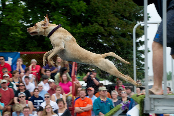 Ultimate Air Dogs, July 4th - Cherry Festival<br /> <br /> Photographer's Name: Jason Lome<br /> Photographer's City and State: Traverse City, MI