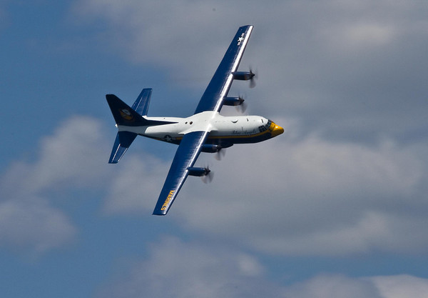 <b>Submitted By:</b> Peggy Zinn <b>From:</b> Traverse City <b>Description:</b> Fat Albert on a wing