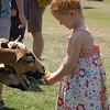 "<span style=""display:none"">Email: smelton40@yahoo.com</span> <b>Submitted By:</b> Susan Melton <b>From:</b> Beulah <b>Description:</b> Kate Hemingway from Bay City shares with new friends at the petting zoo at the National Cherry Festival Wednesday afternoon."