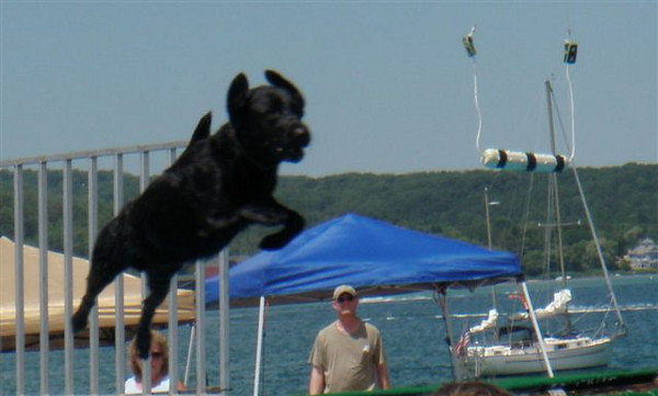"<span style=""display:none"">Email: donroutzahn@yahoo.com</span> <b>Submitted By:</b> Donald Routzahn <b>From:</b> Traverse City <b>Description:</b> This was taken at the Airdog competitin this afternoon."