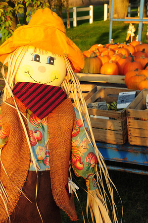 <b>Submitted By:</b> Rick Max <b>From:</b> Northport, Michigan <b>Description:</b> A Scarecrow stands beside a Wagon at a Pumkin Stand in Traverse City 10/2/11