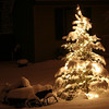 <b>Submitted By:</b> Peggy Sue Zinn <b>From:</b> TRAVERSE CITY <b>Description:</b> MISS MARY'S LITTLE TREE
