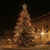 Traverse City Christmas tree 2007,  Happy Holidays Everyone!  Photography by <br /> Peggy Zinn