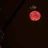 <b>Submitted By:</b> Helen Denoyer <b>From:</b> Traverse City <b>Description:</b> The Cherry Drop New Years Eve 2010