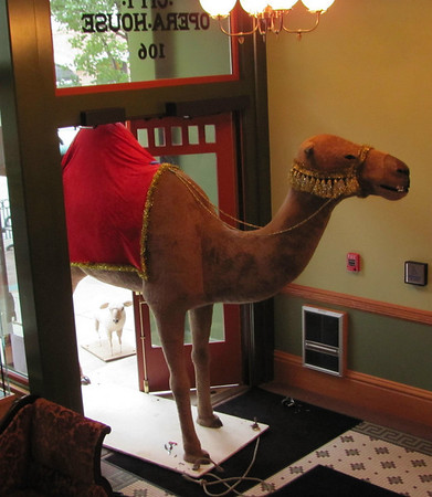 "<b>Submitted By:</b> Dan Beaudoin <b>From:</b> Traverse City, MI <b>Description:</b> ""Hump"" day at the City Opera House.Loading in the props for the upcoming production of ""Joseph and the Amazing Technicolor Dream Coat"" the camel wouldn't fit through the door."
