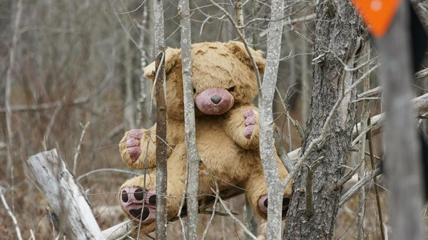 STOP. DONT SHOOT !  Enforcement Bear Decoy !<br /> <br /> <br /> John Novosad<br /> Houghton Lake