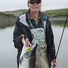 <b>Submitted By:</b> GARY B. HANSEN <b>From:</b> TRAVERSE CITY <b>Description:</b> SILVER SALMON ,SITUK RIVER,YAKUTAT ALASKA