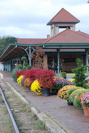 <b>Submitted By:</b> Dagmar Cunningham <b>From:</b> Traverse City <b>Description:</b> Train station Traverse City