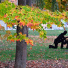 <b>Submitted By:</b> Diane Budzynowski <b>From:</b> Traverse City <b>Description:</b> Traverse City Veteran's Memorial; October 19, 2011