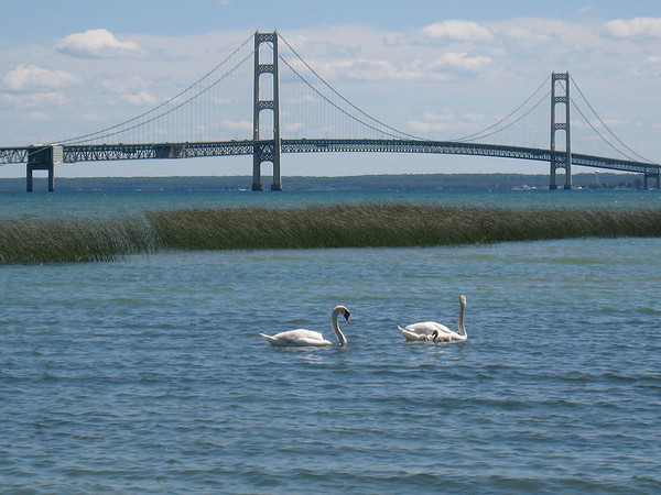 <b>Submitted By:</b> Doug Williams <b>From:</b> Grand Haven, Mi. <b>Description:</b> Mackinac Bridge taken 2010 from the St. Ignace side west of the bridge.