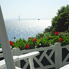 <b>Submitted By:</b> Margaret Pierson <b>From:</b> Traverse City <b>Description:</b> Relaxing on the Grand Hotel's Front Porch - the longest porch in the world!