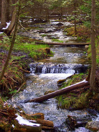 <b>Submitted By:</b> Rick Desrochers <b>From:</b> Empire, Michigan <b>Description:</b> 7 Bridges Hiking Trail near Rapid City and Alden, Michigan