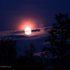 <b>Submitted By:</b> Randal Hart <b>From:</b> Traverse City <b>Description:</b> full moon over trees